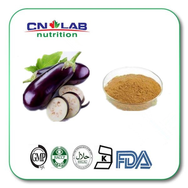 Supply High quality Low Price Eggplant Extract Powder 10:1 1kg