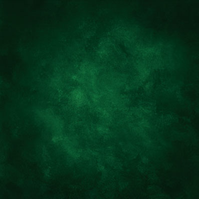 10ft green old master style vinyl print photography backdrop for