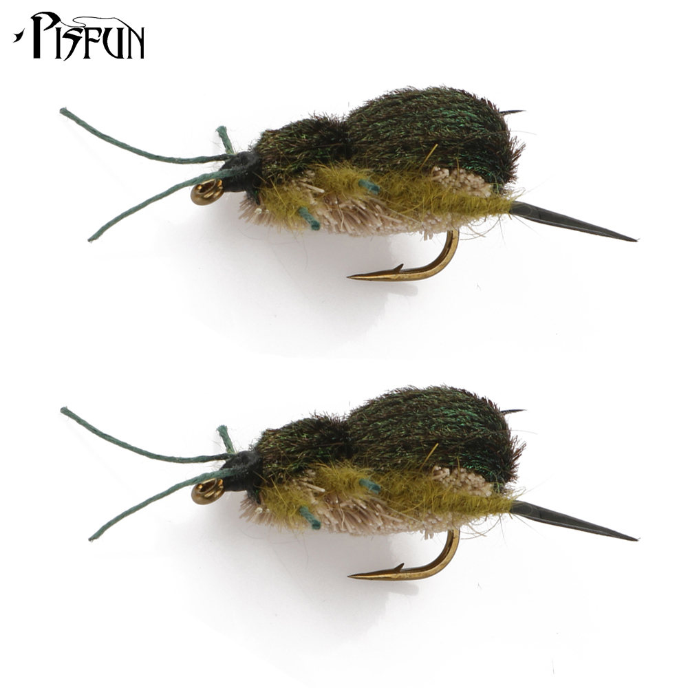 Pisfun 2pcs lot fly fishing lure bait beetle dry flies for Fly fishing lures