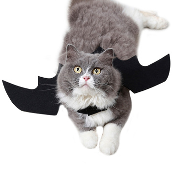 Cat Bat Wings Costume  5