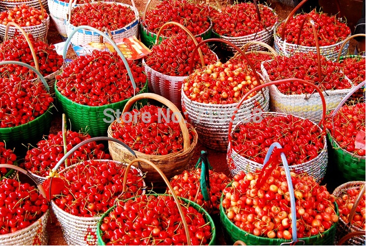 20 seeds/lot free shipping cherry seeds for DIY home garden Free shipping