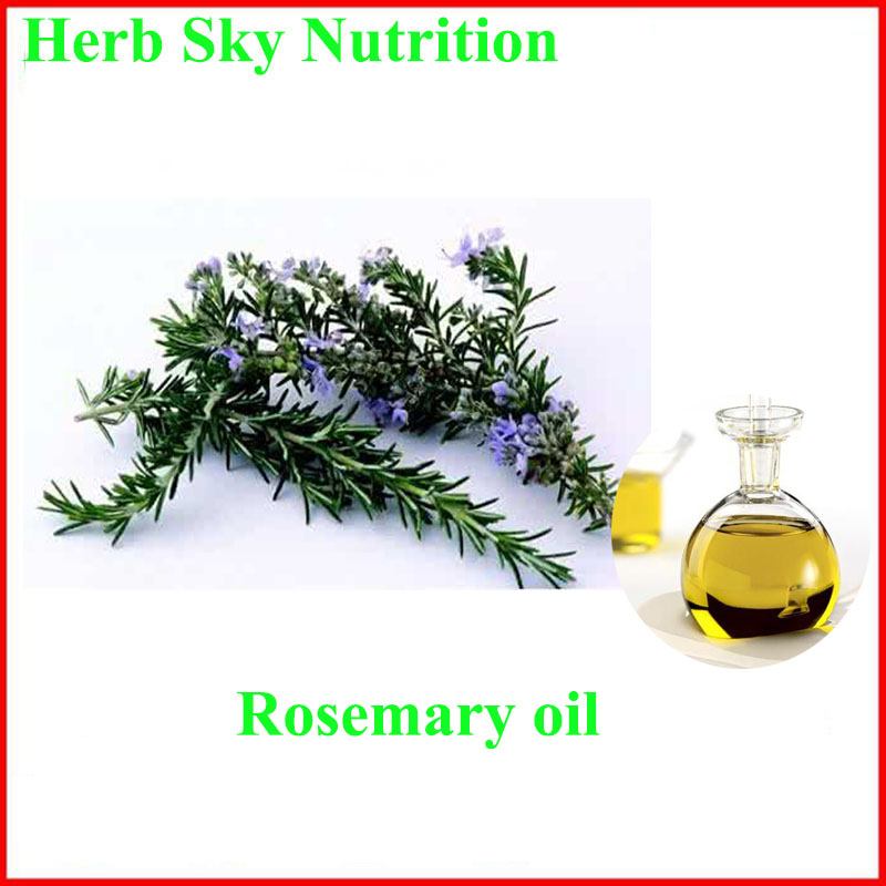 Hot sale & factory price Rosemary Oil with free shipping, 99% hot sale cayler