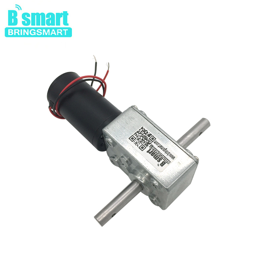 Bringsmart 5840-31zy 24V High Torque Worm Geared Motor Reversed Reducer DC 12V Dual Shaft Motor Self-lock Automatic Drying RackBringsmart 5840-31zy 24V High Torque Worm Geared Motor Reversed Reducer DC 12V Dual Shaft Motor Self-lock Automatic Drying Rack