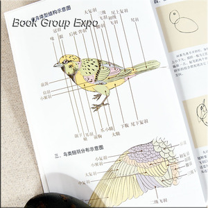 Image 4 - Chinese painting book animal bird painting book by gongbi written By Li Xiaoming 54 Page