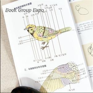 Image 4 - اللوحة الصينية كتاب الحيوان الطيور اللوحة كتاب بواسطة gongbi كتبه لي xiaming 54 Page