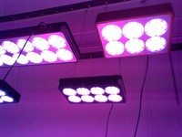Оптовая светодио дный продажа Apollo растет свет 300 Вт 600 1500 модуль системы объектив Вентилятор охлаждения сельское хозяйство парниковых гидро...