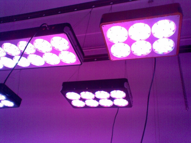10pcs/lot Wholesale Apollo LED grow light module system& lens cooling fan for Agriculture Greenhouse hydro indoor plants growth