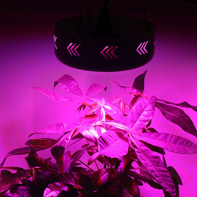 Whosale 72LED 55W Full Spectrum LED Led Grow Light Plant Growing Lamp for Flower Vegetables Led Chip Greenhouse Plant Lamp T2  3pcs newest ufo 150w led grow light full spectrum 50x3w led chip plant growing lamp for flower vegetables express free shipping