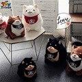 Peluche de felpa Japón Mameshiba Sankyoudai leal perro Shiba Inu tres hermanos muñeca de juguete baby girl boy kids birthday gift shop deco