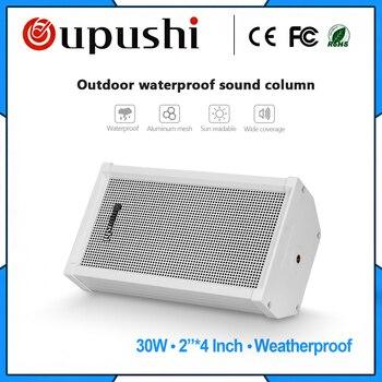 oupushi  CS-642 30 watt outdoor waterproof sound outdoor speaker in street public park