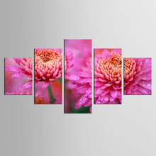 5 pieces/set home wall art decor canvas Wall Art picture for living room bedroom color chrysanthemum print Painting