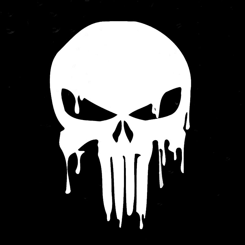 13x19cm Warzone Punisher Skull Car Auto Decal Sticker