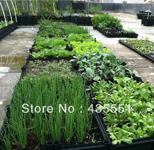 DIY Smart Plant Box Vegetable Garden Raised Bed