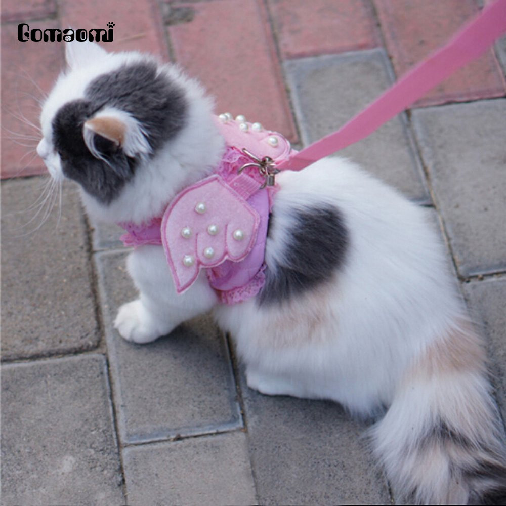 Cute Comfort Cat Dog Leashes And Harness Set For Pet Safety Walking Vest Harness Angel Wings Shape With Pearls Adjustable Collar Home & Garden