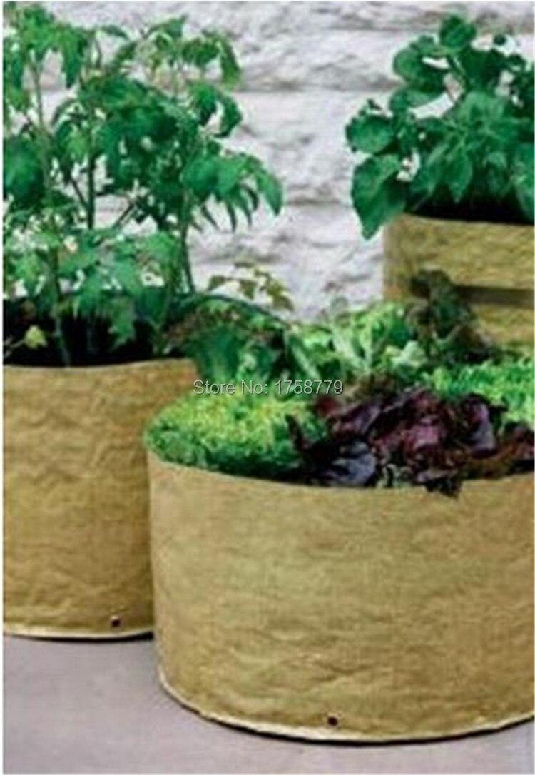 Home Vegetable Garden Youtube