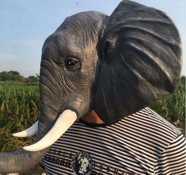Elephant Maskalar Halloween Yetkin Lateks Maska Realistic Heyvan - Şənlik aksesuarları - Fotoqrafiya 3