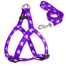 Small dog harness and leash with paw prints
