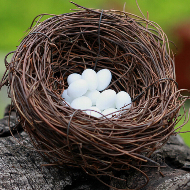 DIY Simulation Animal Model Parrot Bird Nest Egg Figurine Bonsai Home Decor Miniature Fairy Garden Decoration Accessories Modern 3