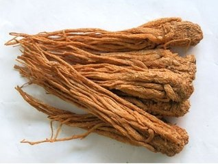 100% Natural product Angelica Extract with Ligustilide 1%