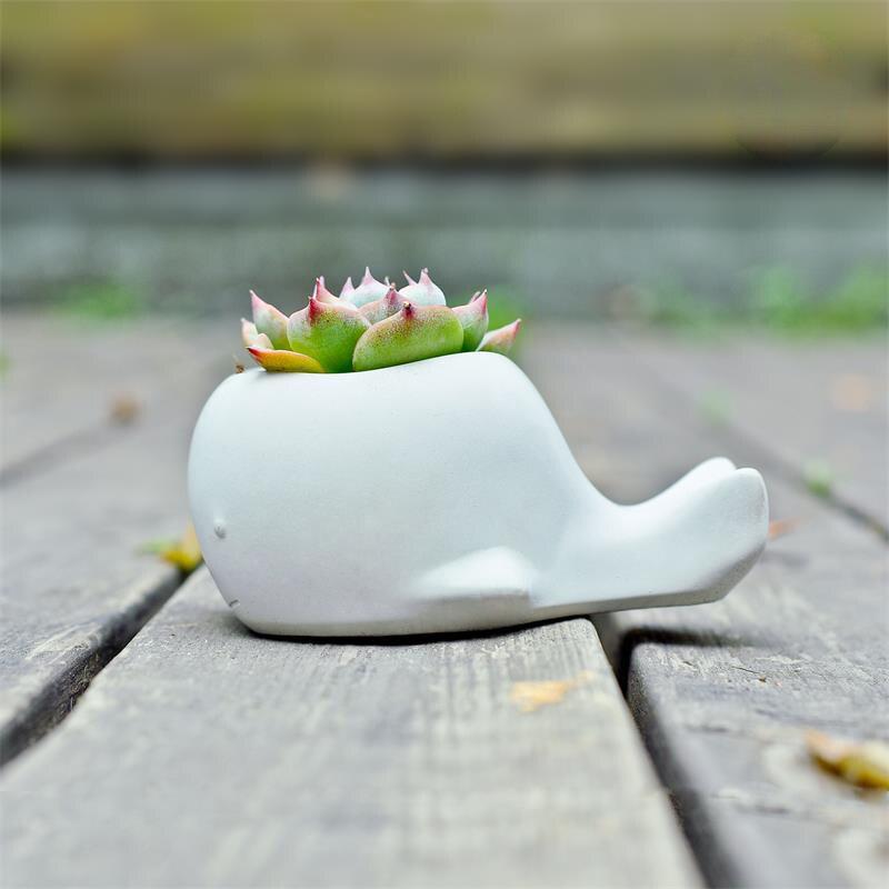 Image 4 - Succulent plants flower pot silicone mold cartoon animal whale  shape garden plants creative concrete mold gypsum pot moldClay Molds