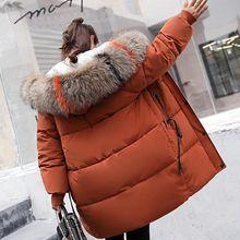 Brieuces Winter women Warm Jacket Women fur collar Thick female jacket  women Hooded Coat Down Cotton Parkas Long Outerwear цена в Москве и Питере