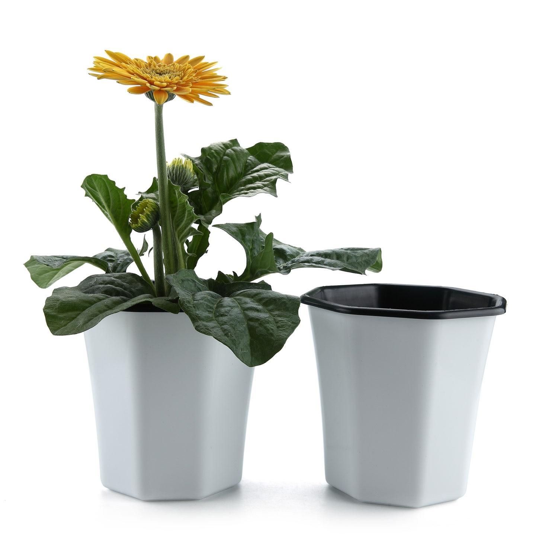 T4U Plastic Self Watering Planter Pot 5