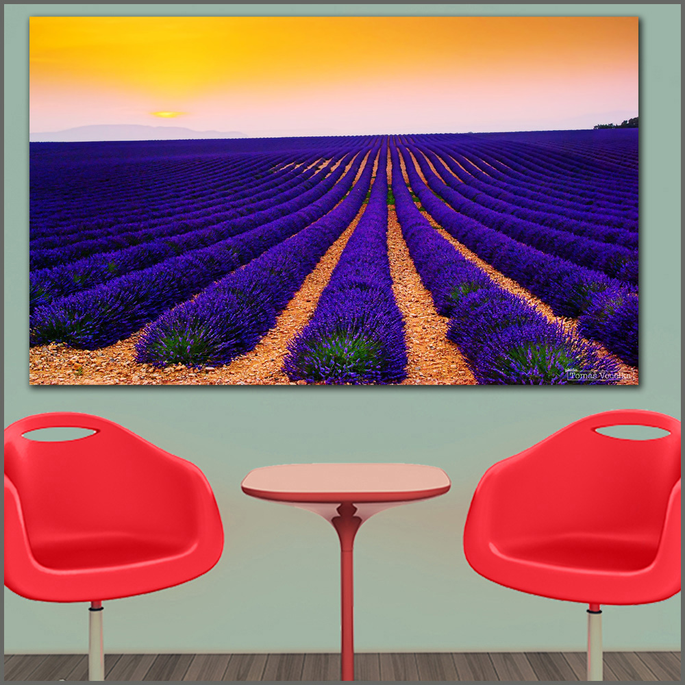 Large size Printing Oil Painting lavender fields sunset landscape art canvas print pictures for living room and bedroom No Frame