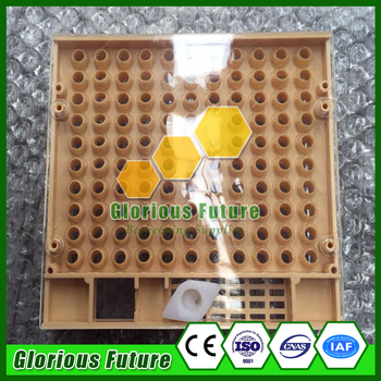 2Pcs Plastic Beekeeping Queen Rearing Box with Queen Cell Cups High Quality Beekeeping Supplies Beehive Tools