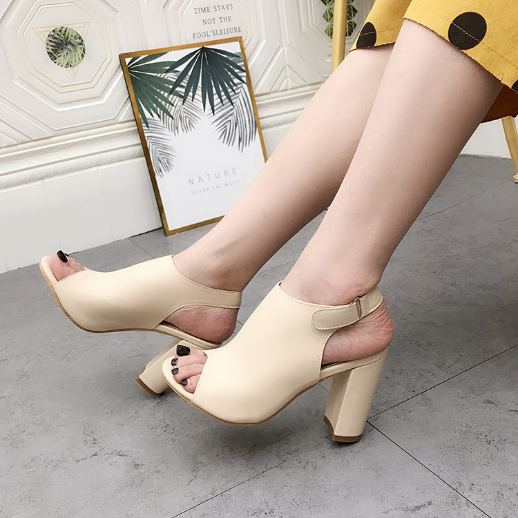 Liren 2019 New Fashion Women Sexy Causal Sandals Gladiator Fish Mouth Open Toe High Square Heels Hook&Loop