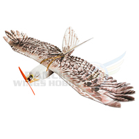 DW Hobby Foam Glider RC Plane EPP Biomimetic Mini Eagle Model Aircraft Wingspan 1200mm Slow Flyer Airplane Trainer for Beginners
