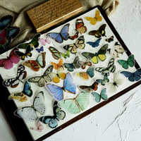 80pcs Butterfly Illustration Vellum Paper Stickers for Scrapbooking Happy Planner/Card Making/Journaling Project