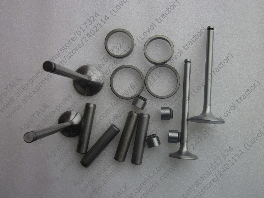 Xinxiang TY290X TY295X engine parts,the set of valve group: valves, seals, valve seats,valve guide as regular supply