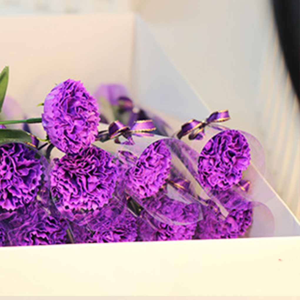 5 Colors Carnation Shaped Soap Decoration Carnation Flower Petals Bath Soap Essential Oil Carnation Soap Valentine's Day Gift