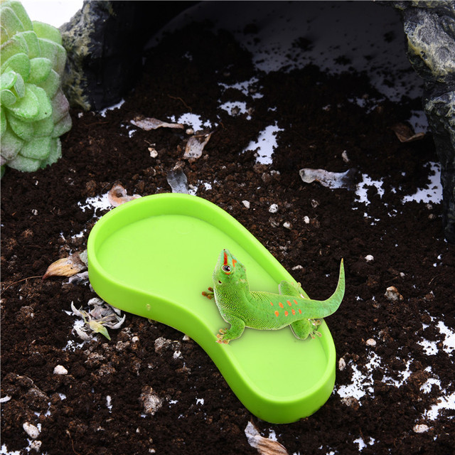 Amphibians and Reptiles' Safe,durable,poisonless and harmless,Easy to clean and carry,Footprint type feeding basin newest 2017