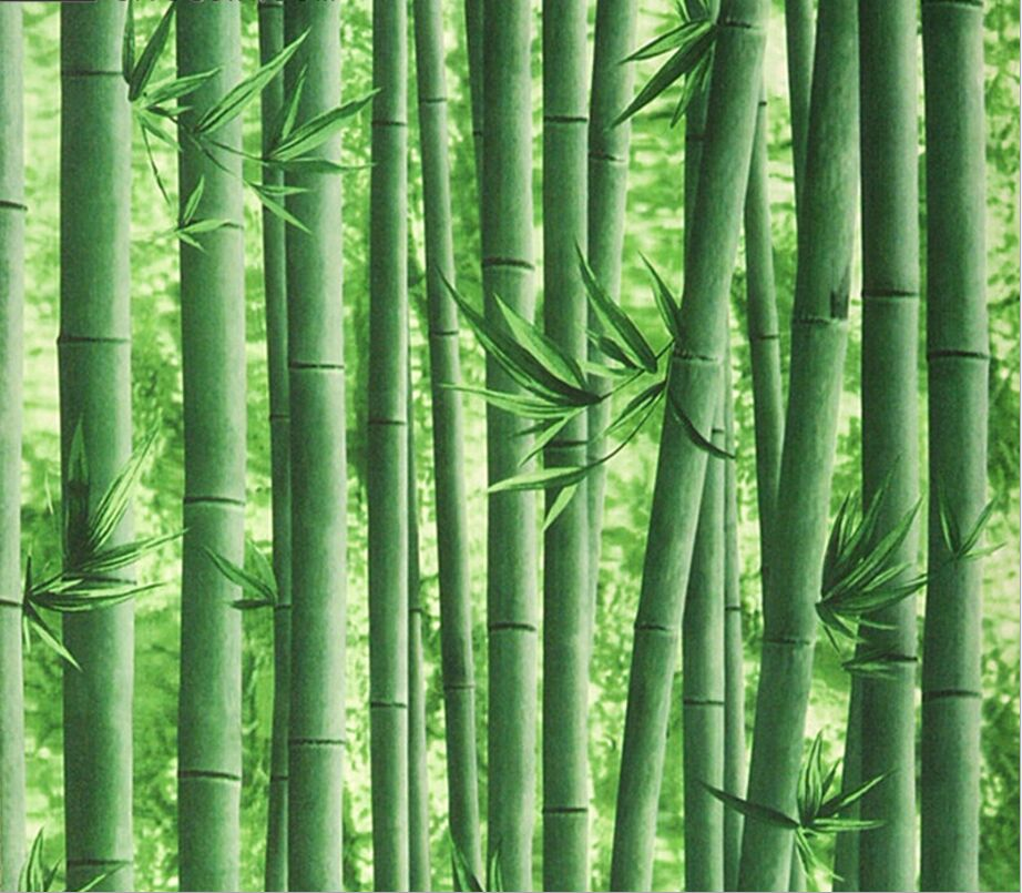 Visual 3d bamboo wallpaper restaurant entrance living room TV background wall classical Chinese ...
