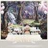 Vinyl Photography Backdrop Fairy Tale Princesses Snow White Birthday Party Personalized Photo Backdground G 042