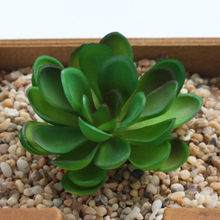 new Happy Lotus Artificial Simulation Meaty plant Conversion Garden Family Kitchen Kindergarten Handwork DIY Decoration Fruit(China)