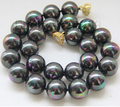"17"" 16mm round Multicolor black seashell pearls necklace magnet clasp e2089 Factory Wholesale price Women Giftword Jewelry"