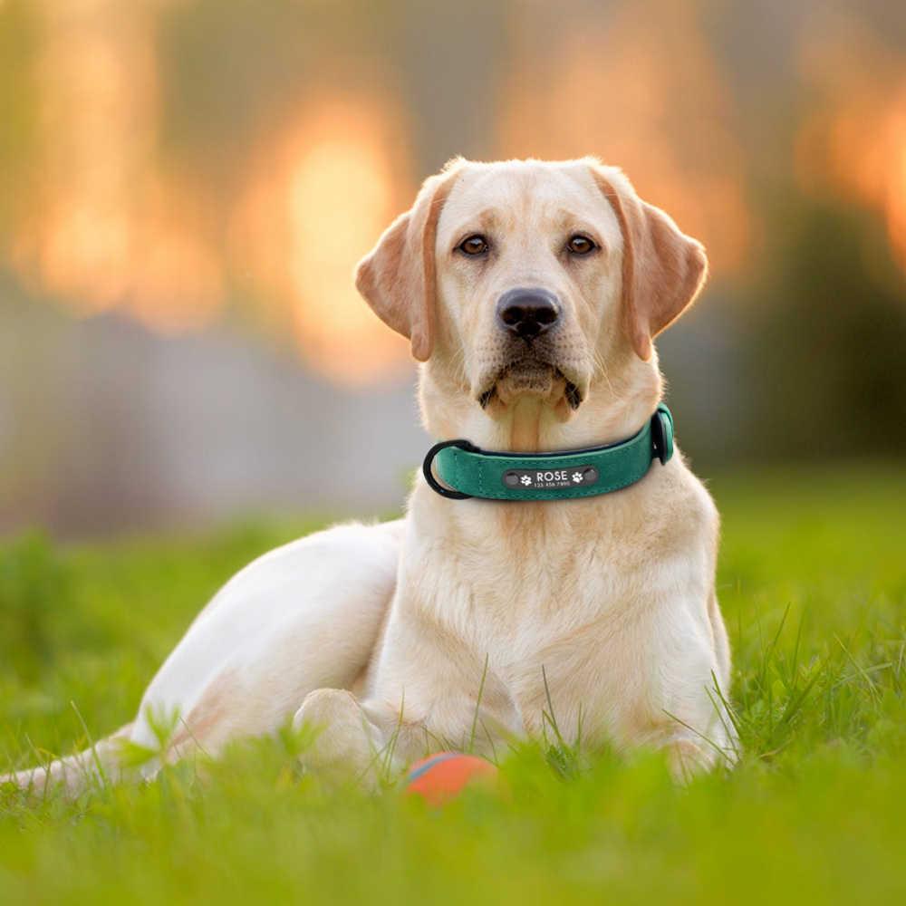 Collares de Perro personalizados de cuero Perro Collar nombre ID etiquetas para perros pequeños medianos grandes Pitbull Bulldog Beagle Correa Perro