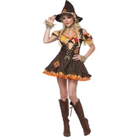 The Wizard of OZ Cosplay Costume for Adult Women Sexy Witch Cosplay Fancy Halloween Party Dress Erotic Princess Costumes Z9051