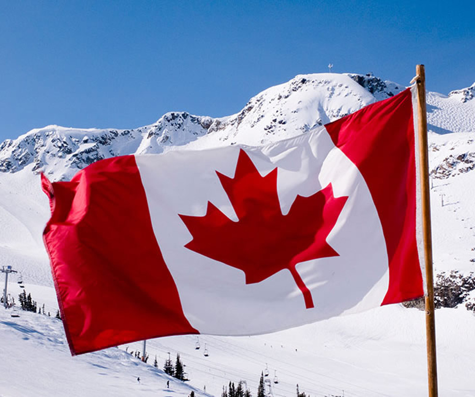 compare prices on maple leaf canada online shopping buy low price