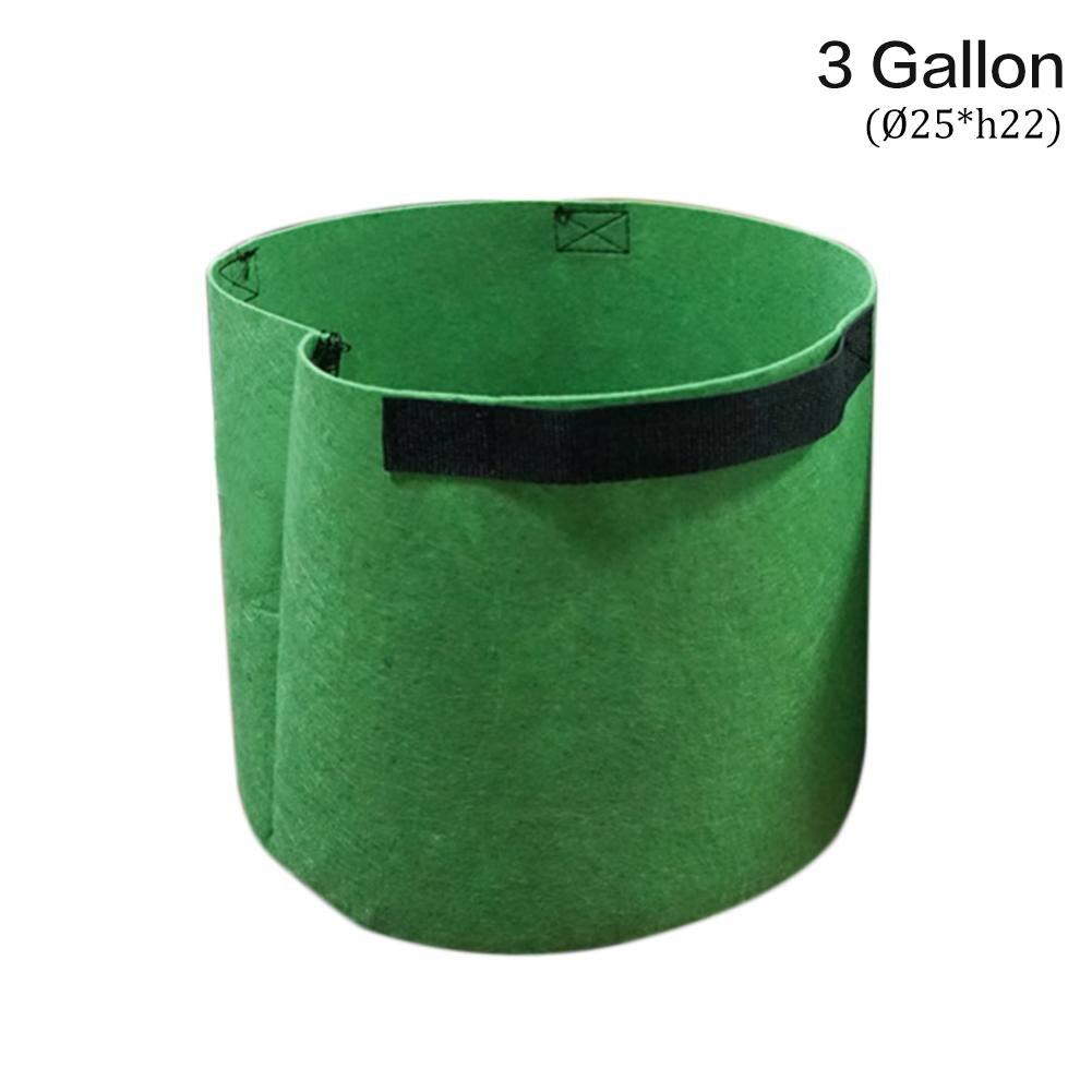 Green 3 Gallon
