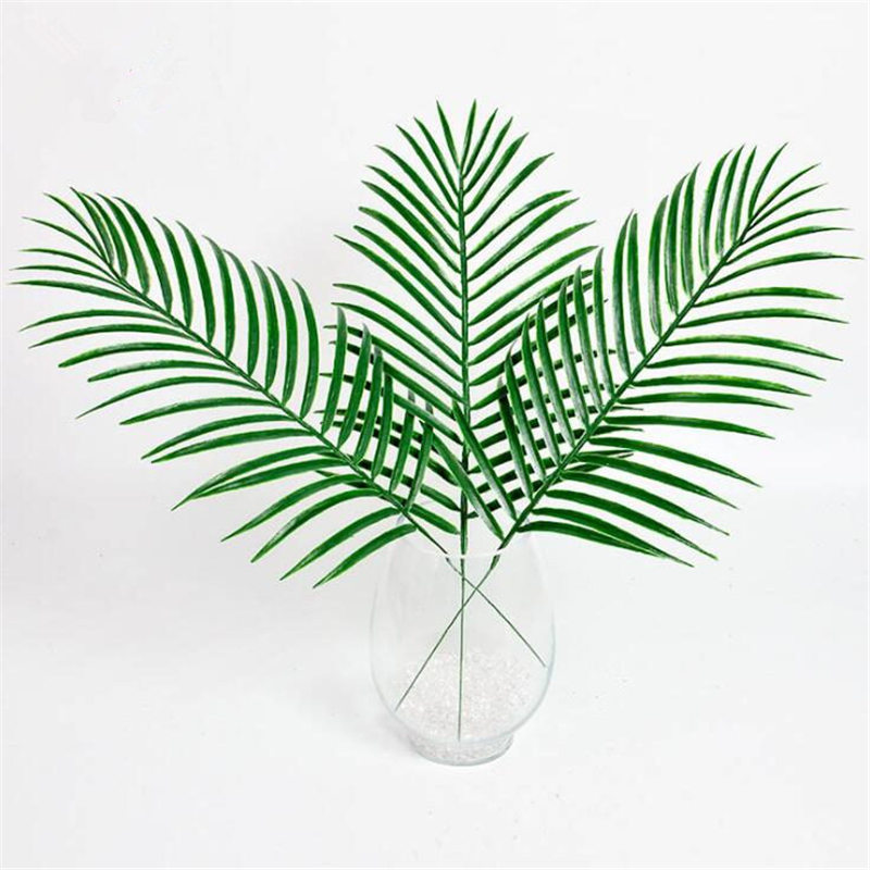 Plant Decorations Home