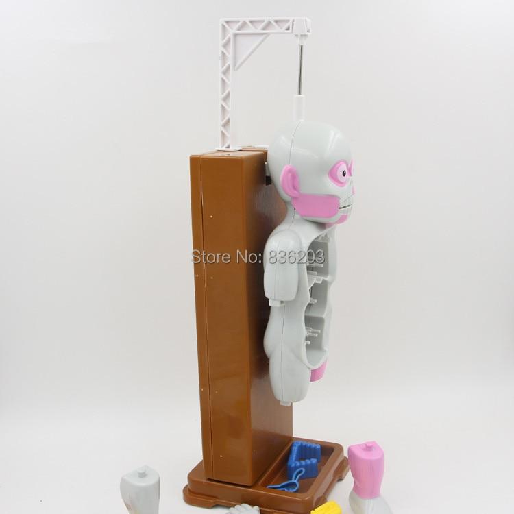 4D Master medizinische menschlicher schädel skeleton anatomisches ...