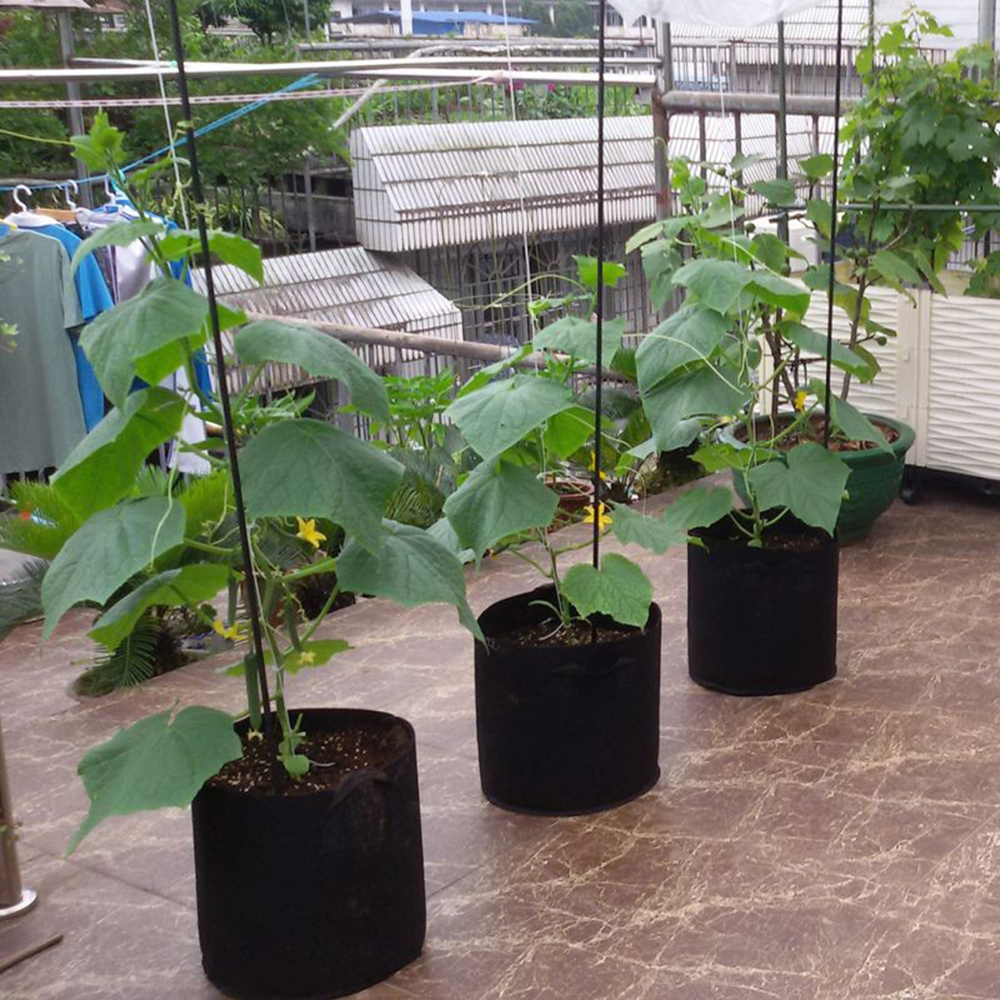 5 unids/lote 3/5/7/10/15/20 galones macetas de tela redonda negra bolsa para planta contenedor de raíces bolsa de cultivo maceta de ventilación contenedor Espectro completo 300/600/800/900/1000/1200/1800/2000W LED Luz de cultivo 410-730nm para plantas de interior y tienda de cultivo de flores de invernadero