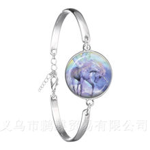 Unicorn Horse Bracelet 18mm Glass Dome Cabochon Charm Silver Plated Chain Bangle For Women Men Best Gift(China)