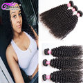 Cheap Human Hair Wet and Wavy Virgin Brazilian Hair Raw Unprocessed Brazillian Hair Loose Curly Brazilian Virgin Hair Water Wave