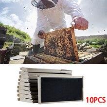 Пчелиный воск гнездо улей 10 рамка набор 10 основа 10 глубокие рамки для Langstroth пчеловодства сосны пчеловодства оборудование#10