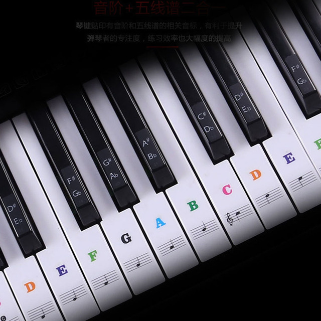 54/61 Keys Music Decal Sticker Label PVC Note Removable Biginners Piano Keyboard Stave 3