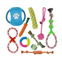 10 Pcs Dog Toys Pet Interactive Toy Chihuahua Chew Toys Flying Discs Ropes Pet Balls Dogs